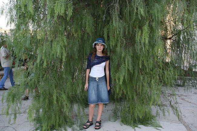 Горчичное зерно и дерево - что имел в виду Иисус (8)